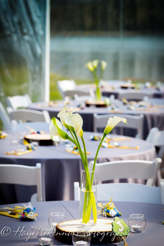Shade Tress and Evergreens Wedding 136