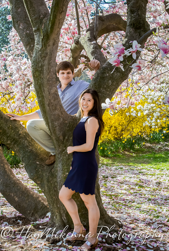 Cherry Blossom Engagement 13