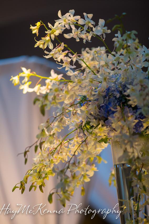 Monaco Wedding  283