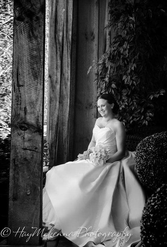 Shade Tress and Evergreens Wedding 122