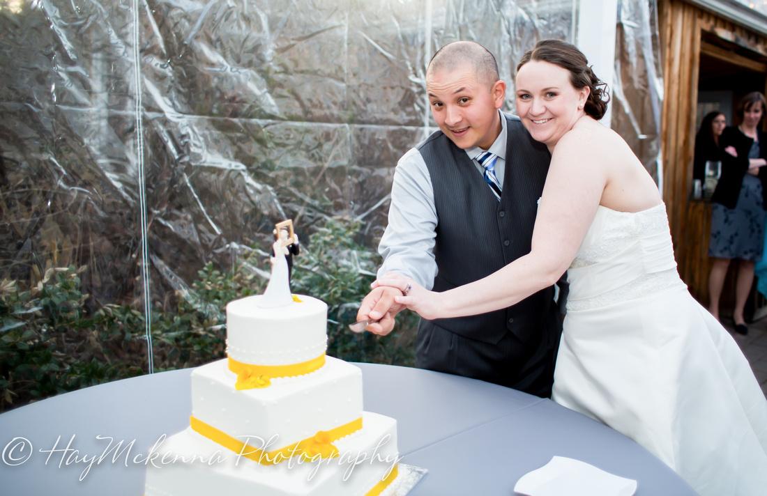 Shade Tress and Evergreens Wedding 201