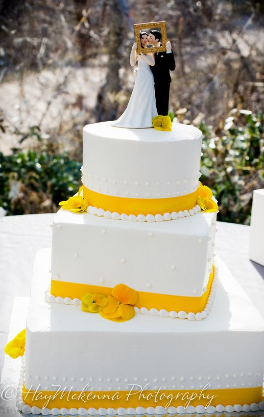 Shade Tress and Evergreens Wedding 139